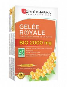 Forté Pharma Gelée Royale...