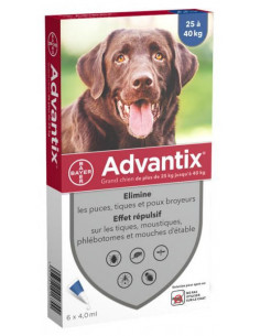 Bayer Advantix Grand Chien...